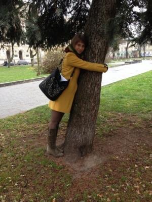 my tree.jpg